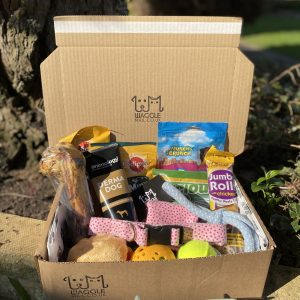 Monthly dog Subscription Box Waggle Mail Large Dog Gifts