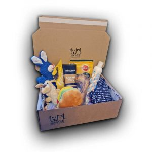 Medium Dog Subscription Box Waggle Mail