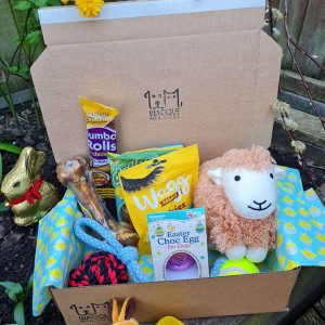 Waggle Mail Dog Easter Box/ Dog Easter Gift Box